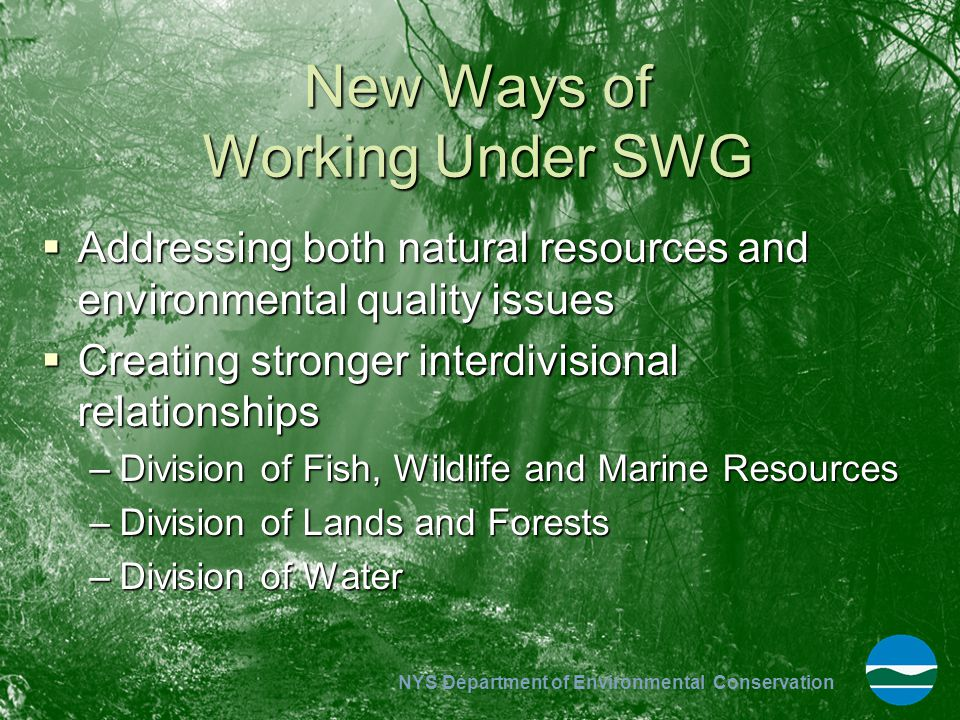 NYS Department of Environmental Conservation New Ways of Working Under SWG  Addressing both natural resources and environmental quality issues  Crea