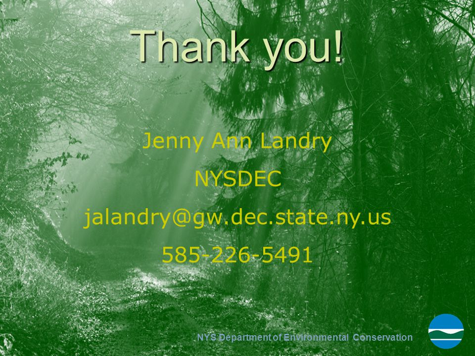NYS Department of Environmental Conservation Thank you! Jenny Ann Landry NYSDEC jalandry@gw.dec.state.ny.us 585-226-5491