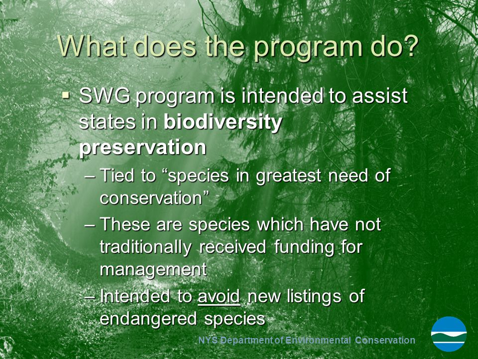 NYS Department of Environmental Conservation Top Threats to Species of Greatest Conservation Need Statewide  Habitat loss and fragmentation –Only 15% of state land area in public ownership  Contaminant deposition –Acids –Mercury –Nitrogen products  Degraded water quality & altered hydrology