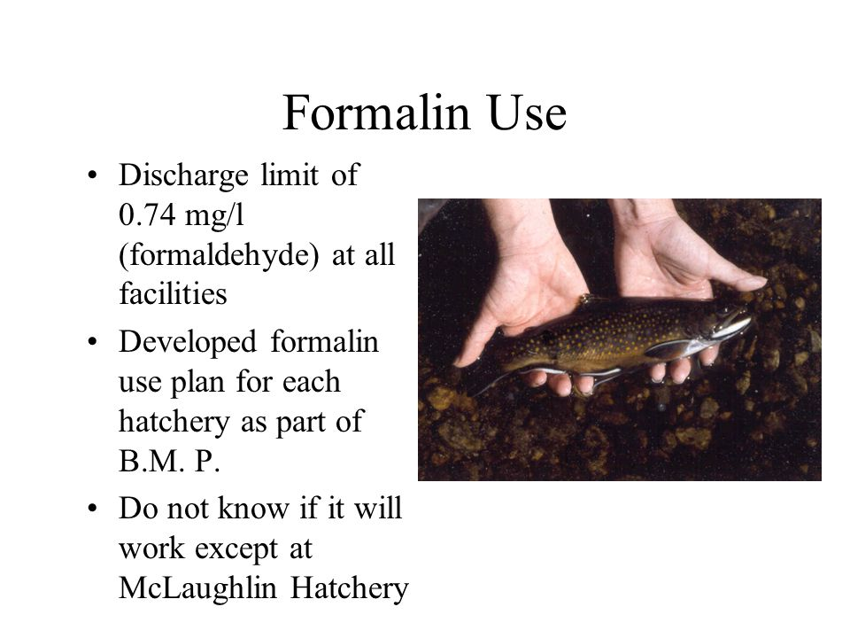 Formalin Use Discharge limit of 0.74 mg/l (formaldehyde) at all facilities Developed formalin use plan for each hatchery as part of B.M.