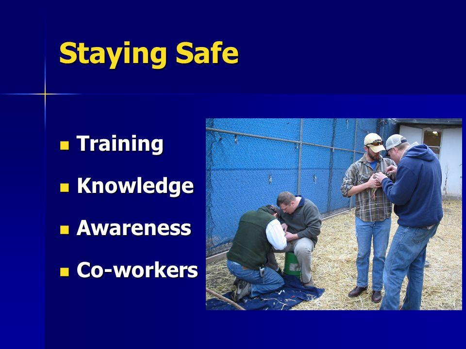 Staying Safe Training Training Knowledge Knowledge Awareness Awareness Co-workers Co-workers