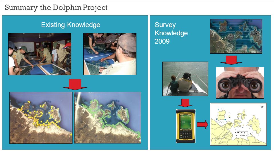 Summary the Dolphin Project Existing KnowledgeSurvey Knowledge 2009