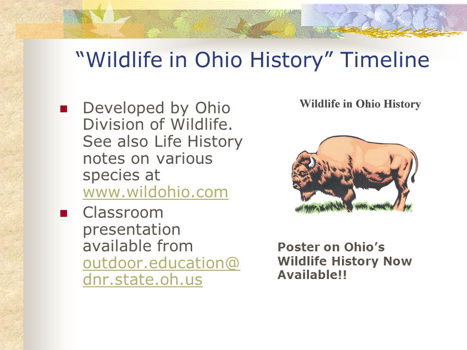 Wildlife in Ohio History Timeline Developed by Ohio Division of Wildlife.