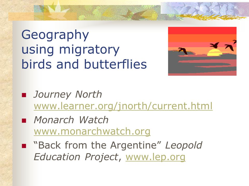 Geography using migratory birds and butterflies Journey North www.learner.org/jnorth/current.html www.learner.org/jnorth/current.html Monarch Watch www.monarchwatch.org www.monarchwatch.org Back from the Argentine Leopold Education Project, www.lep.orgwww.lep.org