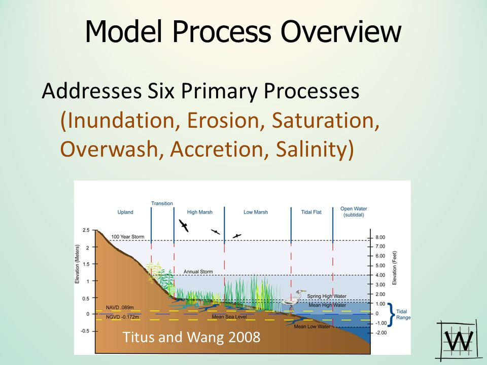 Mcleod, Poulter, et al., 2010 Ocean & Coastal Management SLR impact models and environmental conservation, a review of models and their applications SLAMM 5 Advantages – Can be applied at wide range of scales – Provides detailed information about coastal habitats and shift in response to SLR – Can be used to identify potential future land-use conflicts – Integrates numerous driving variables – Provides useful, high-resolution, insights regarding how SLR may impact coastal habitats.