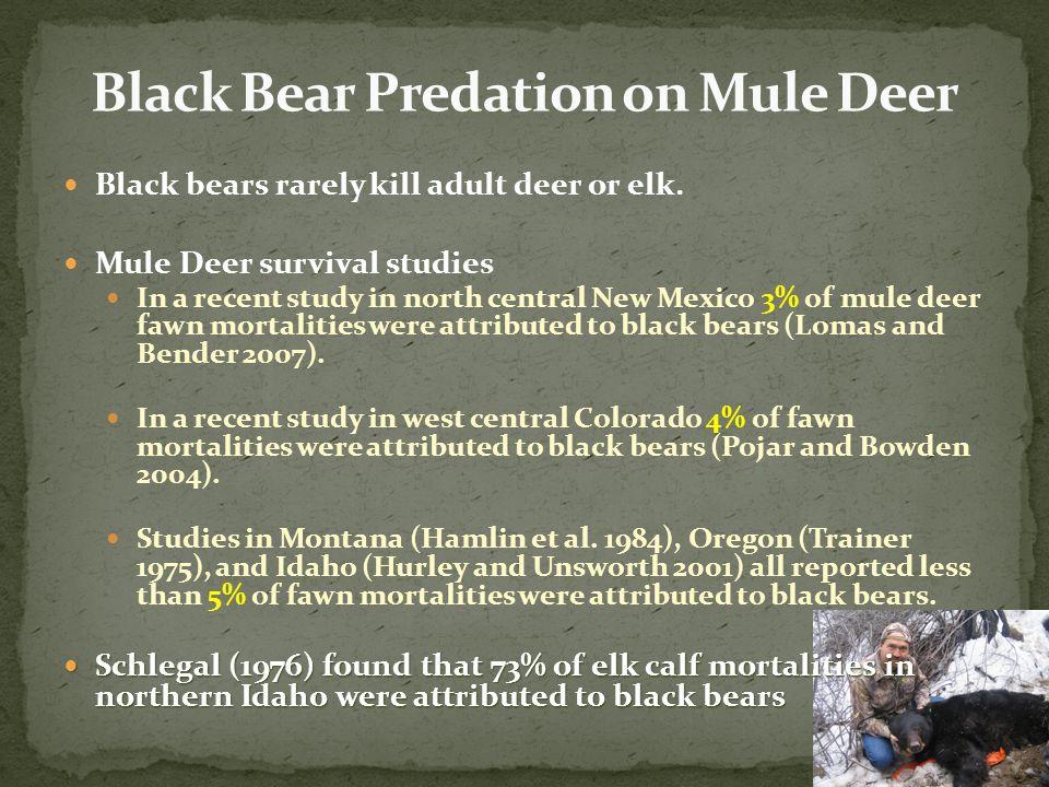 Black bears rarely kill adult deer or elk.