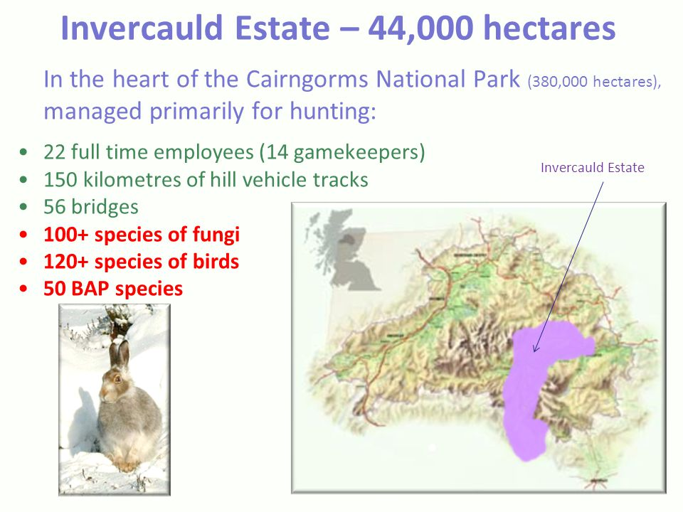 Invercauld Estate – 44,000 hectares In the heart of the Cairngorms National Park (380,000 hectares), managed primarily for hunting: 22 full time employees (14 gamekeepers) 150 kilometres of hill vehicle tracks 56 bridges 100+ species of fungi 120+ species of birds 50 BAP species Invercauld Estate
