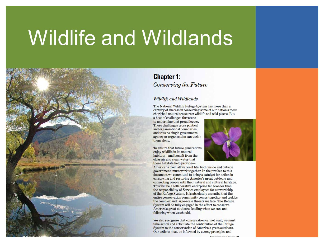 Wildlife and Wildlands