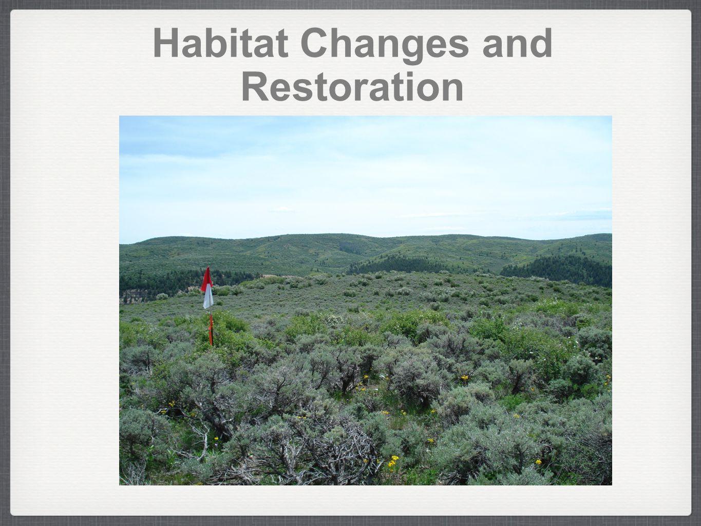 Habitat Changes and Restoration