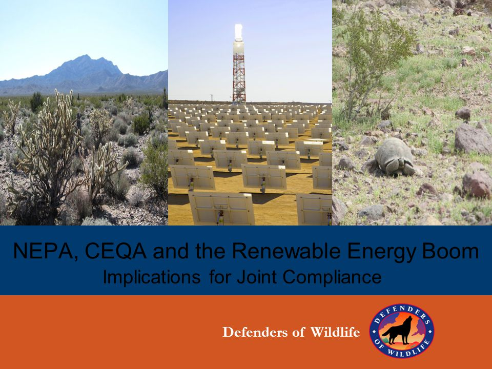 NEPA, CEQA and the Renewable Energy Boom Implications for Joint Compliance Defenders of Wildlife