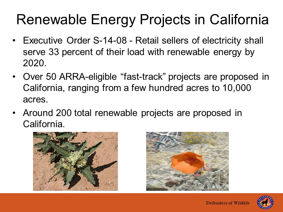 Defenders of Wildlife title here text here Renewable Energy Projects in California Executive Order S-14-08 - Retail sellers of electricity shall serve