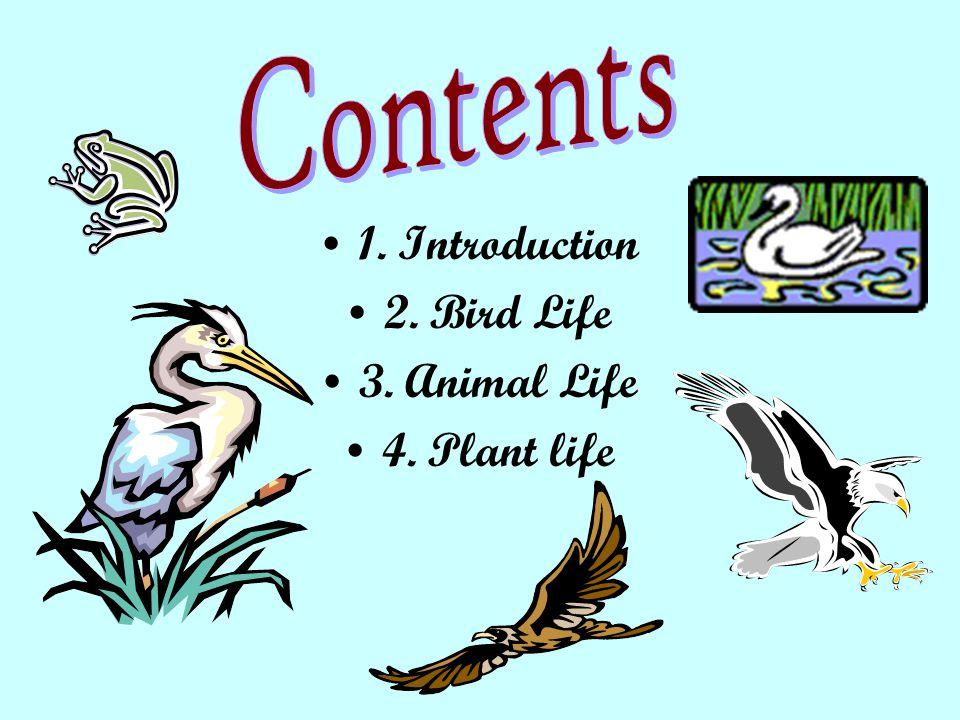 1. Introduction 2. Bird Life 3. Animal Life 4. Plant life