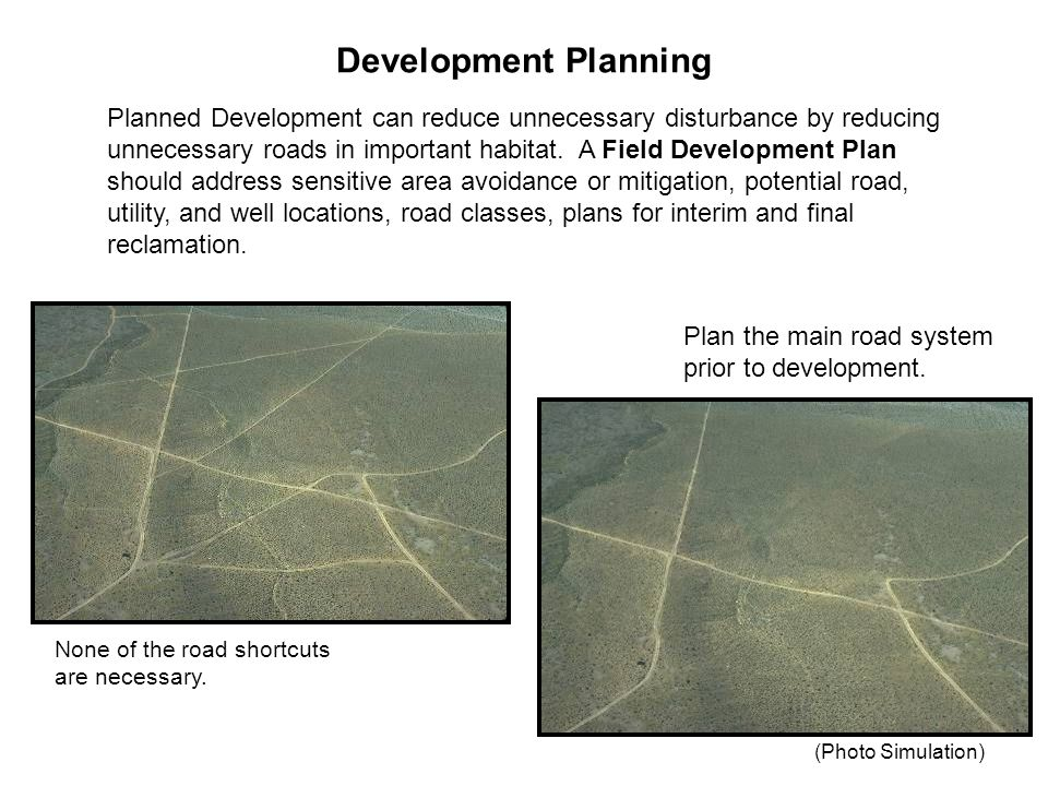 Development Planning Planned Development can reduce unnecessary disturbance by reducing unnecessary roads in important habitat.