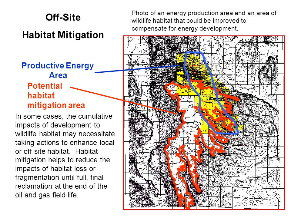 Potential habitat mitigation area Productive Energy Area Off-Site Habitat Mitigation In some cases, the cumulative impacts of development to wildlife habitat may necessitate taking actions to enhance local or off-site habitat.