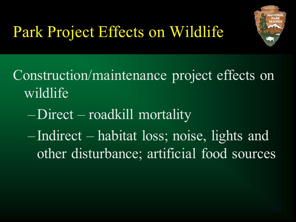 Park Project Effects on Wildlife Construction/maintenance project effects on wildlife –Direct – roadkill mortality –Indirect – habitat loss; noise, lights and other disturbance; artificial food sources