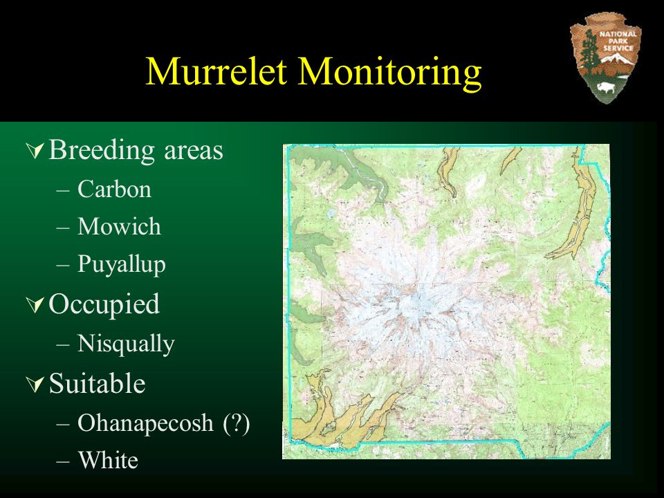  Breeding areas –Carbon –Mowich –Puyallup  Occupied –Nisqually  Suitable –Ohanapecosh ( ) –White Murrelet Monitoring