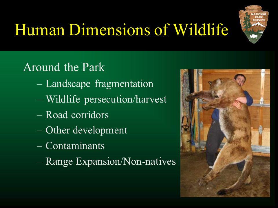 Human Dimensions of Wildlife Around the Park –Landscape fragmentation –Wildlife persecution/harvest –Road corridors –Other development –Contaminants –Range Expansion/Non-natives