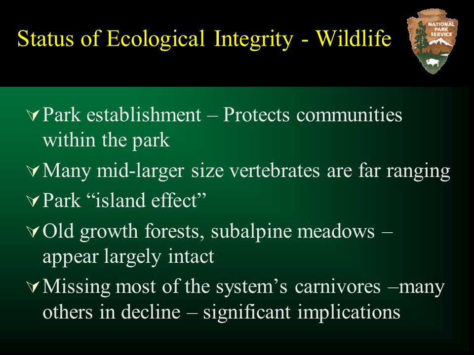 Status of Ecological Integrity - Wildlife  Park establishment – Protects communities within the park  Many mid-larger size vertebrates are far ranging  Park island effect  Old growth forests, subalpine meadows – appear largely intact  Missing most of the system's carnivores –many others in decline – significant implications