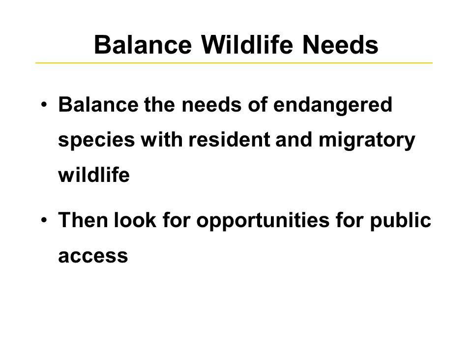 Balance Wildlife Needs Balance the needs of endangered species with resident and migratory wildlife Then look for opportunities for public access