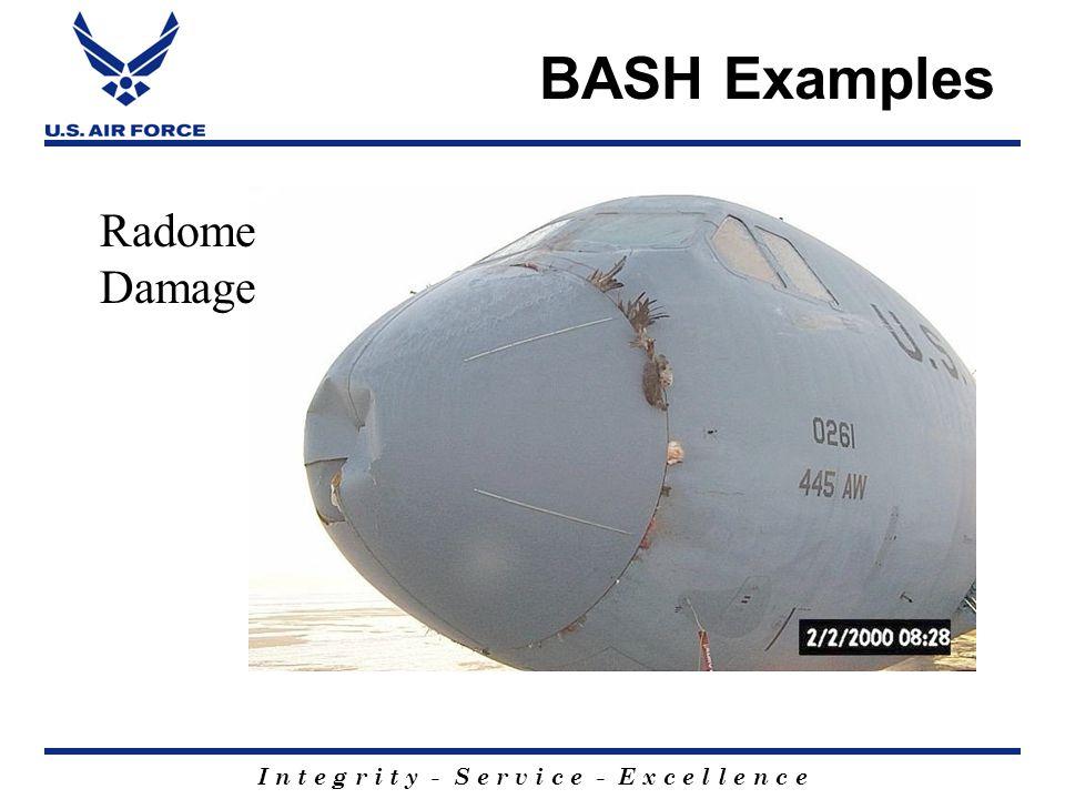I n t e g r i t y - S e r v i c e - E x c e l l e n c e BASH Examples Radome Damage