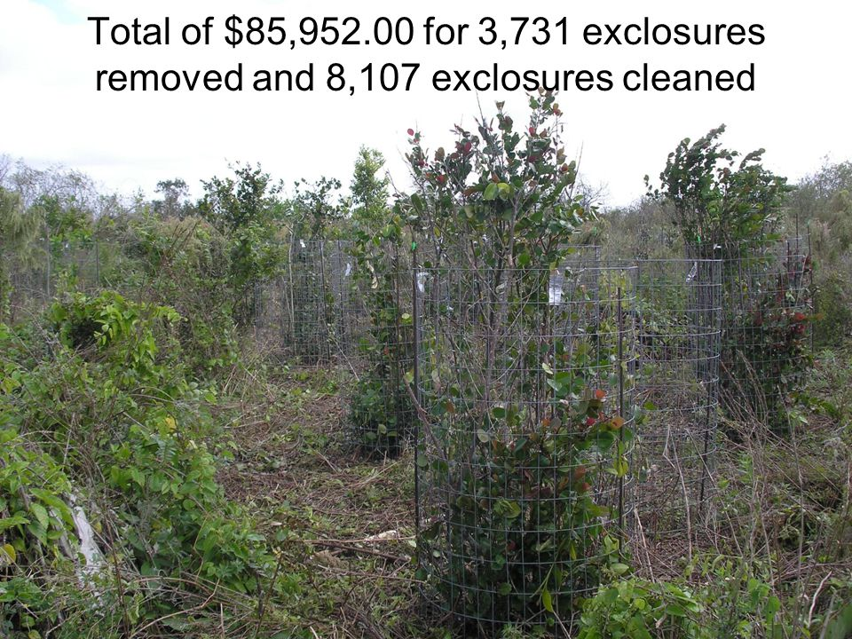 Total of $85,952.00 for 3,731 exclosures removed and 8,107 exclosures cleaned