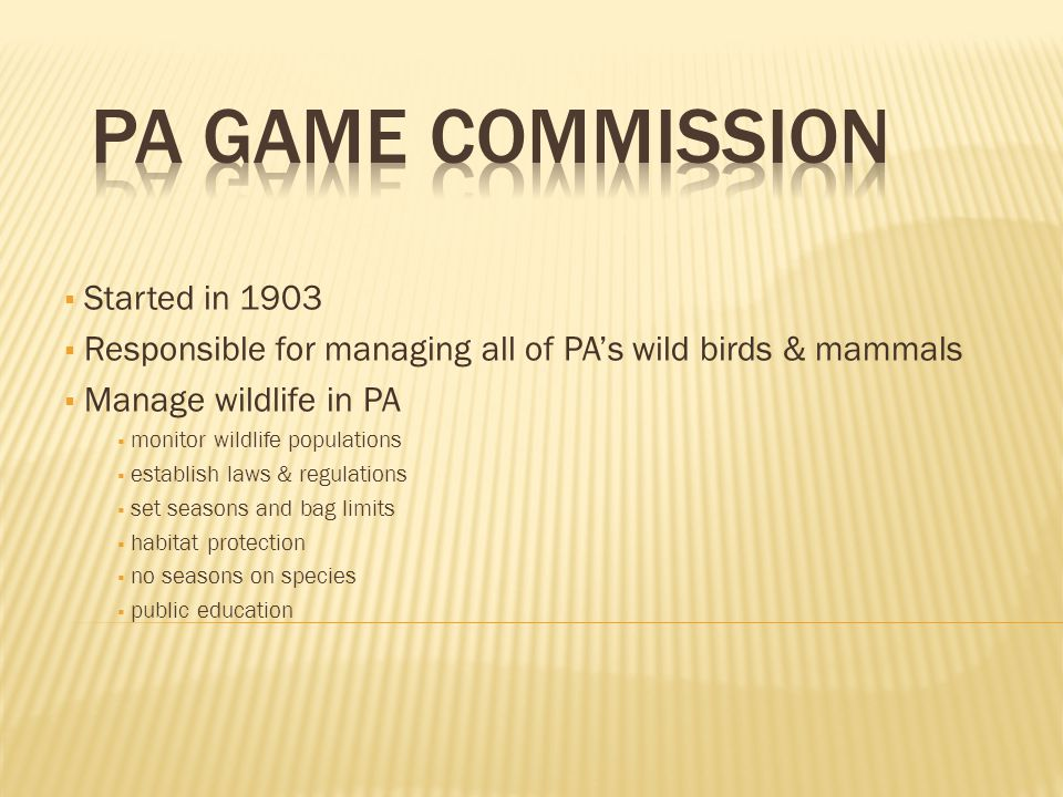  Started in 1903  Responsible for managing all of PA's wild birds & mammals  Manage wildlife in PA  monitor wildlife populations  establish laws & regulations  set seasons and bag limits  habitat protection  no seasons on species  public education