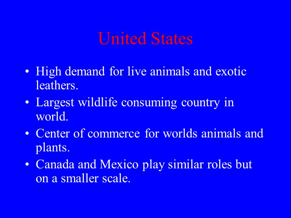 United States High demand for live animals and exotic leathers.