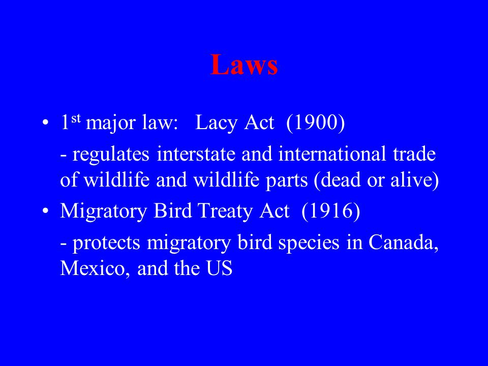 Laws 1 st major law: Lacy Act (1900) - regulates interstate and international trade of wildlife and wildlife parts (dead or alive) Migratory Bird Treaty Act (1916) - protects migratory bird species in Canada, Mexico, and the US