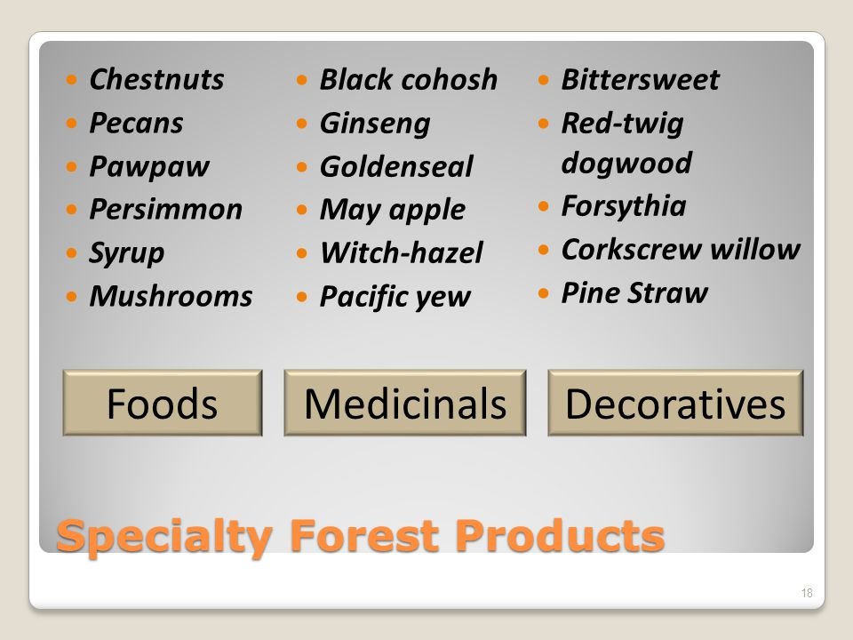Specialty Forest Products Chestnuts Pecans Pawpaw Persimmon Syrup Mushrooms Black cohosh Ginseng Goldenseal May apple Witch-hazel Pacific yew Bittersweet Red-twig dogwood Forsythia Corkscrew willow Pine Straw MedicinalsDecorativesFoods 18