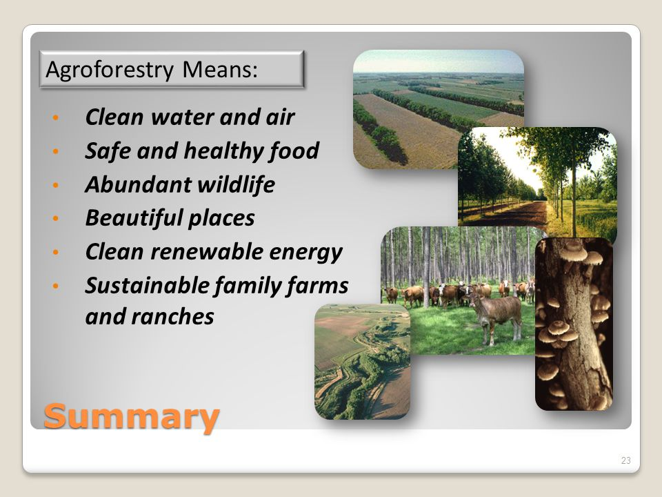 Summary Clean water and air Safe and healthy food Abundant wildlife Beautiful places Clean renewable energy Sustainable family farms and ranches Agrof