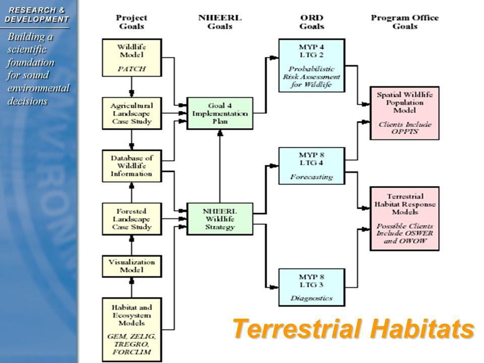 Terrestrial Habitats
