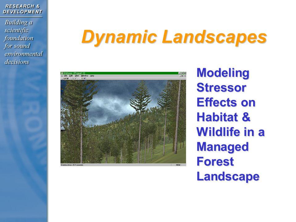 Dynamic Landscapes Modeling Stressor Effects on Habitat & Wildlife in a Managed Forest Landscape