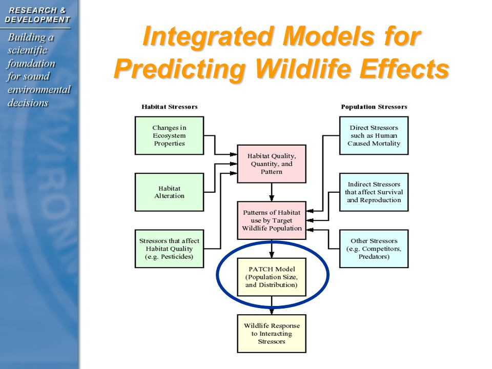 Integrated Models for Predicting Wildlife Effects