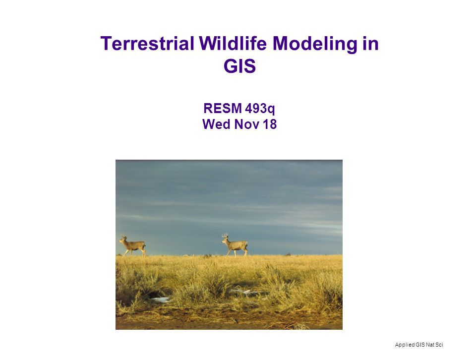 Applied GIS Nat Sci Terrestrial Wildlife Modeling in GIS RESM 493q Wed Nov 18