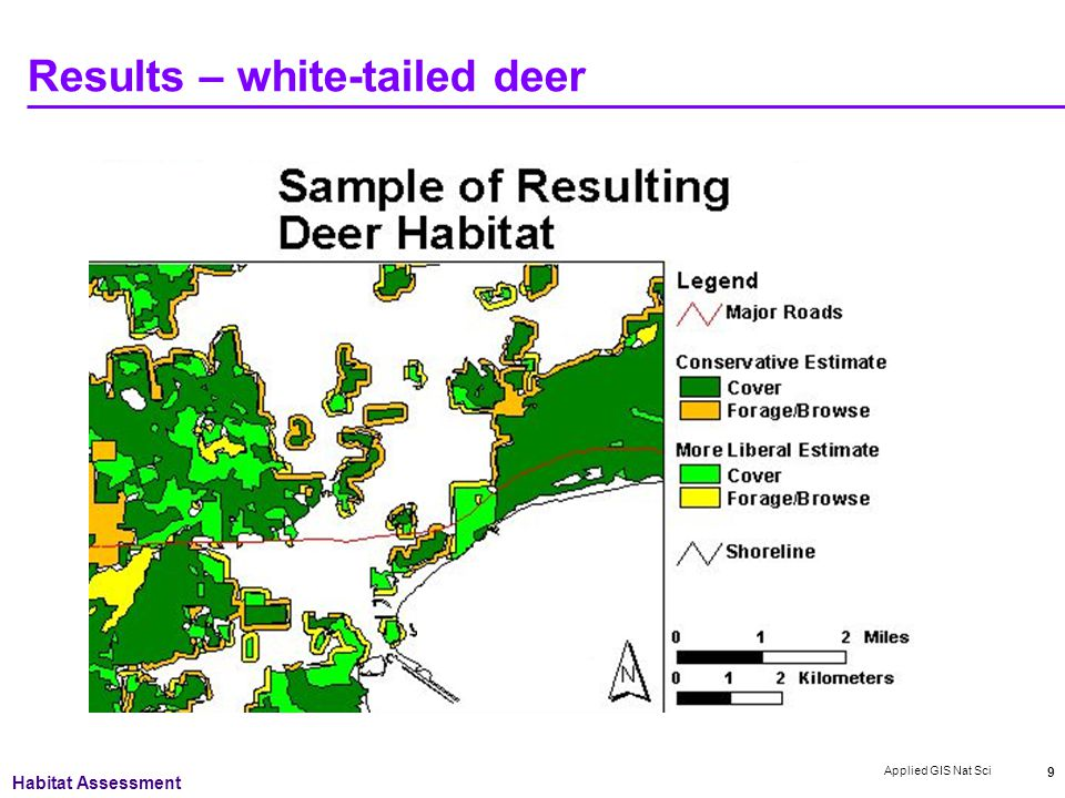 Applied GIS Nat Sci 9 Results – white-tailed deer Habitat Assessment