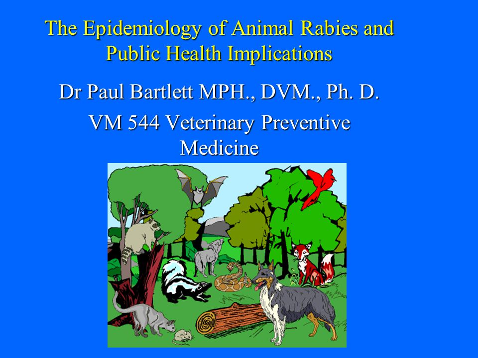 The Epidemiology of Animal Rabies and Public Health Implications Dr Paul Bartlett MPH., DVM., Ph.