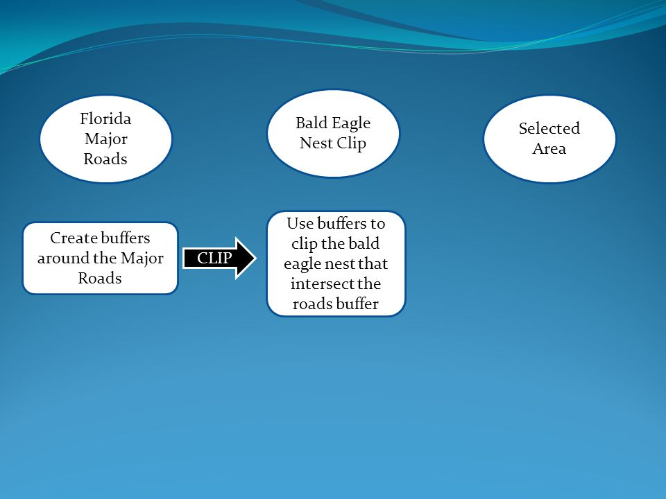 Florida Major Roads Selected Area Bald Eagle Nest Clip Create buffers around the Major Roads CLIP Use buffers to clip the bald eagle nest that intersect the roads buffer