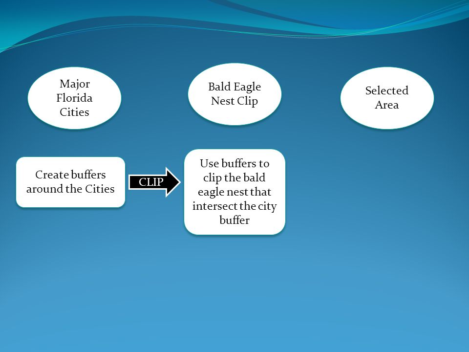 Major Florida Cities Selected Area Bald Eagle Nest Clip Create buffers around the Cities CLIP Use buffers to clip the bald eagle nest that intersect the city buffer