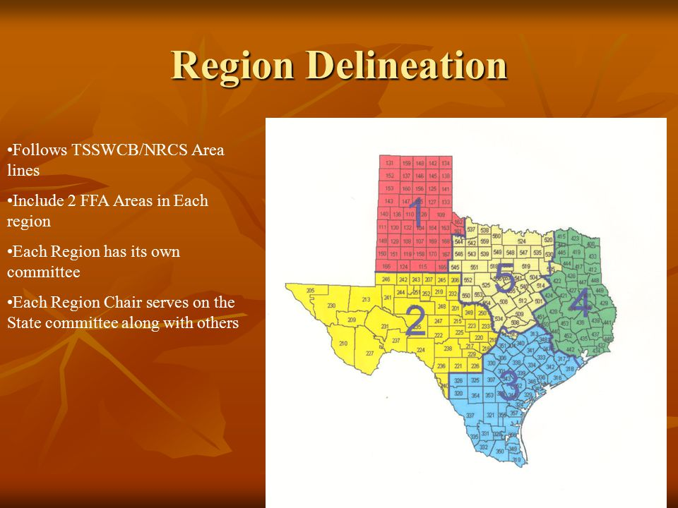 Region Delineation Follows TSSWCB/NRCS Area lines Include 2 FFA Areas in Each region Each Region has its own committee Each Region Chair serves on the