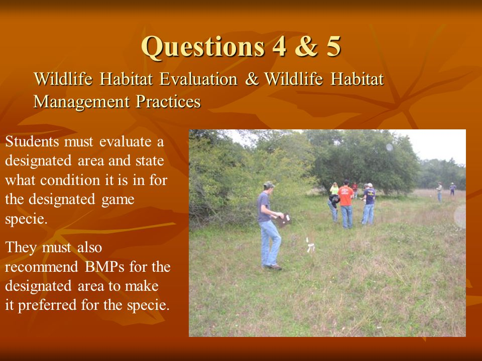 Questions 4 & 5 Wildlife Habitat Evaluation & Wildlife Habitat Management Practices Students must evaluate a designated area and state what condition it is in for the designated game specie.