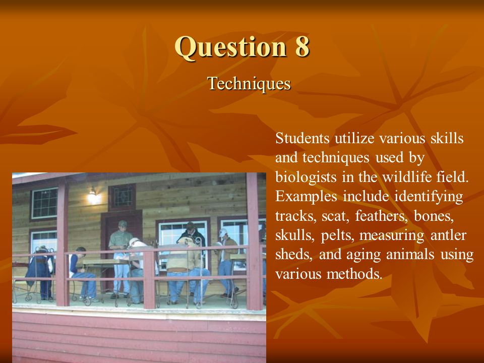 Question 8 Techniques Techniques Students utilize various skills and techniques used by biologists in the wildlife field.