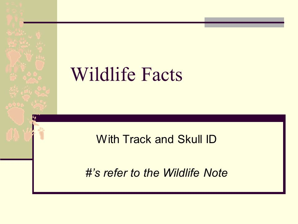 Wildlife Facts With Track and Skull ID #'s refer to the Wildlife Note