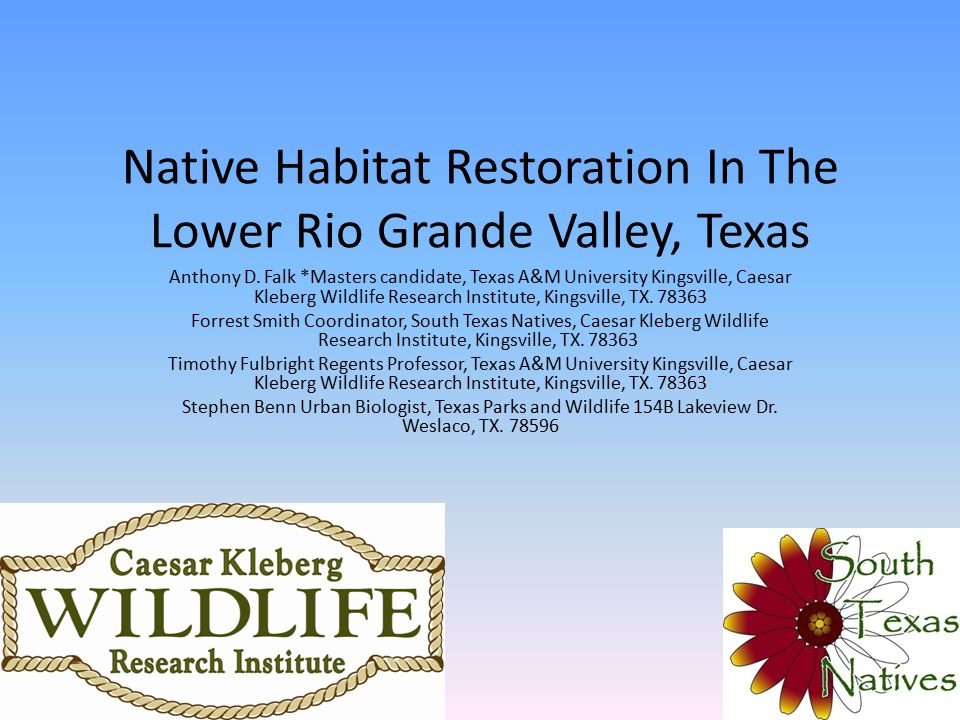 Introduction Millions of acres lost to non-native species annually – Detrimental to wildlife With the costs of productive wildlife habitat ↑ there is an ↑ in the need for restoration