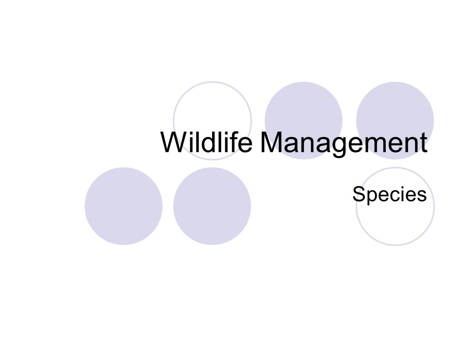 Wildlife Management Species