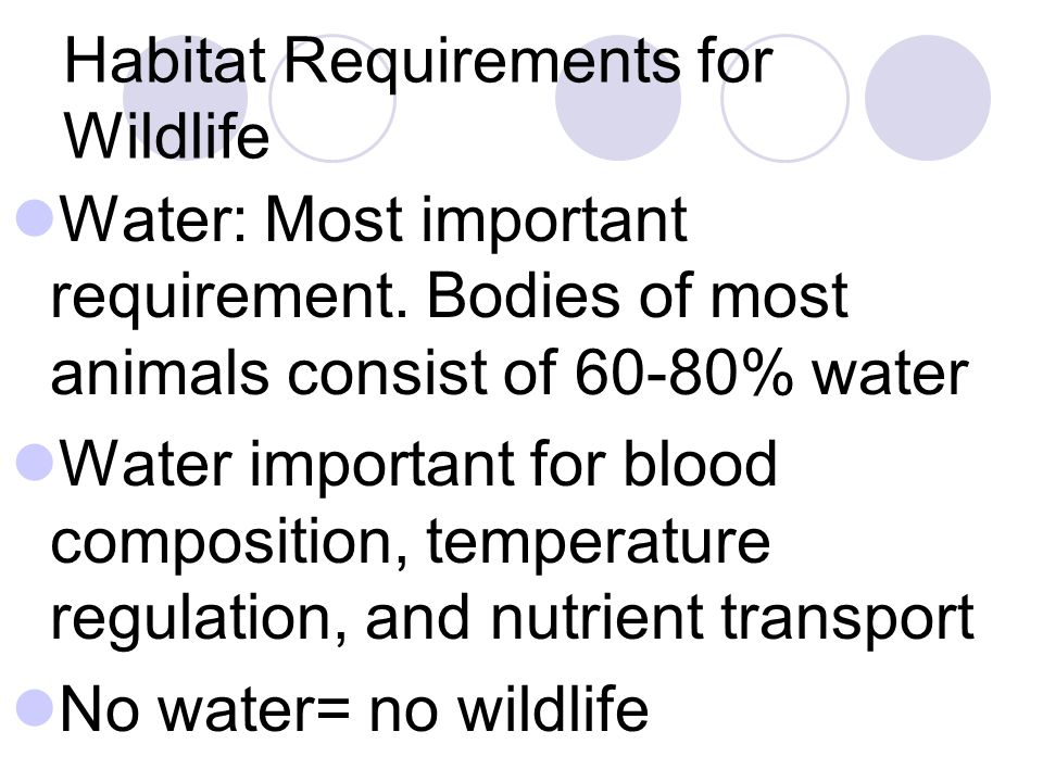 Habitat Requirements for Wildlife Water: Most important requirement.