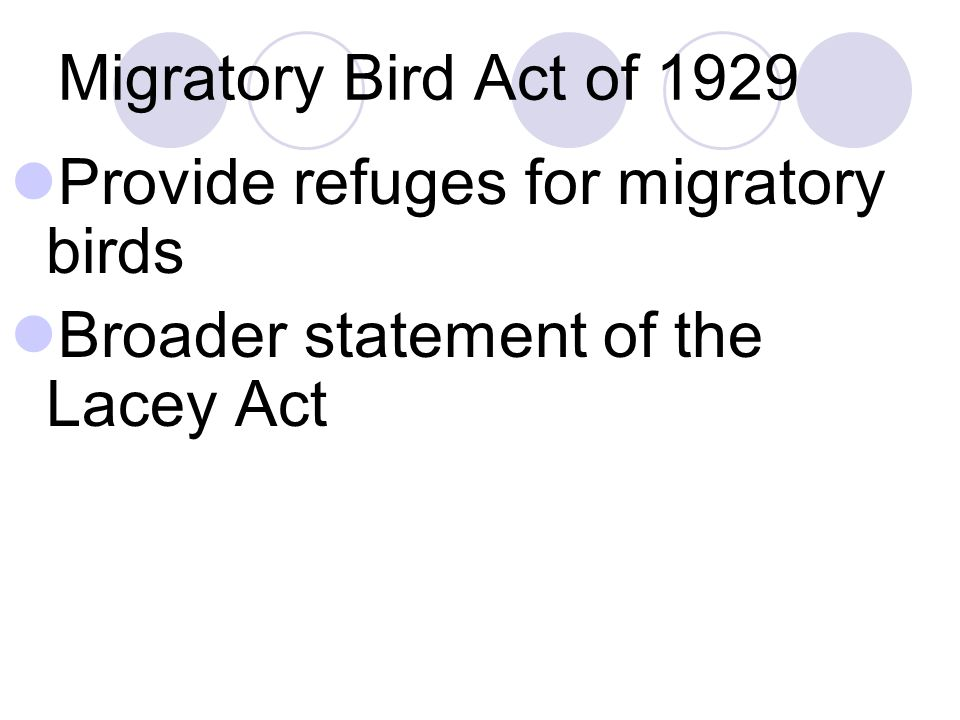 Migratory Bird Act of 1929 Provide refuges for migratory birds Broader statement of the Lacey Act