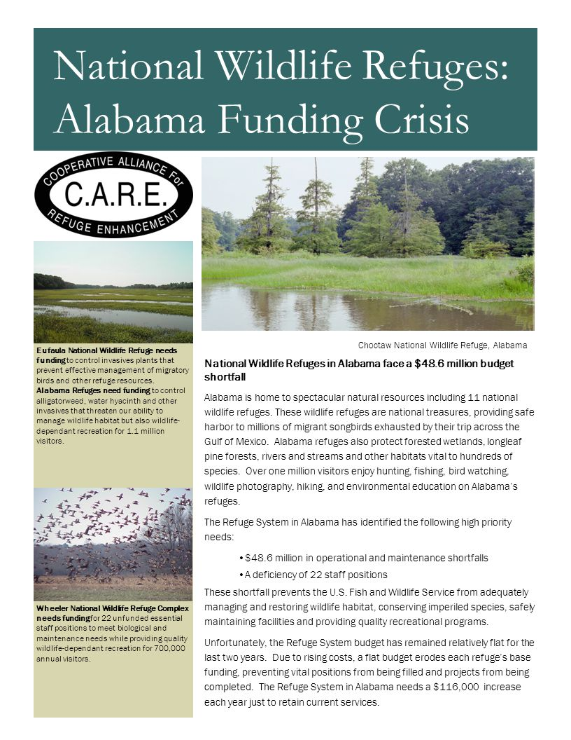 Eufaula National Wildlife Refuge needs funding to control invasives plants that prevent effective management of migratory birds and other refuge resou