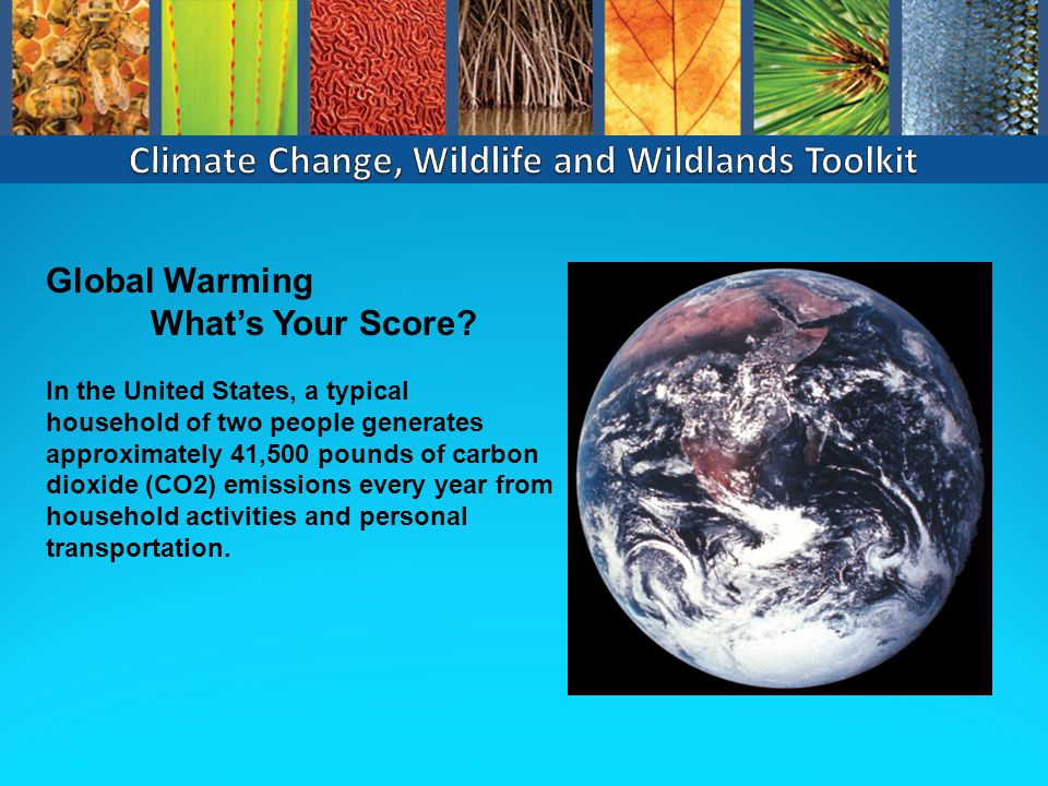 Global Warming What's Your Score.