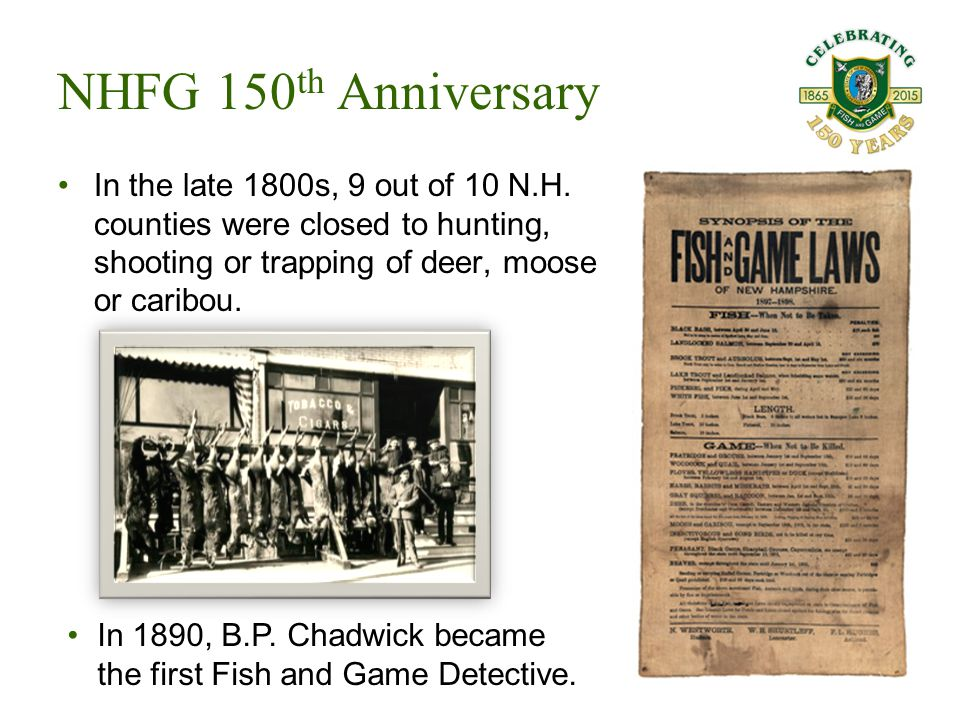 In the late 1800s, 9 out of 10 N.H. counties were closed to hunting, shooting or trapping of deer, moose or caribou. NHFG 150 th Anniversary In 1890,
