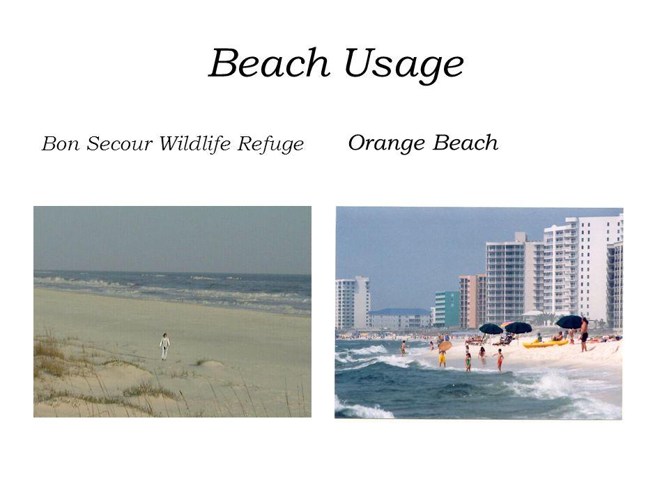 Beach Usage Bon Secour Wildlife Refuge Orange Beach
